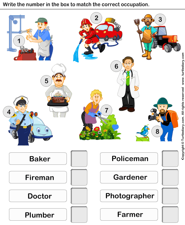 Matching Job And Occupation Worksheet