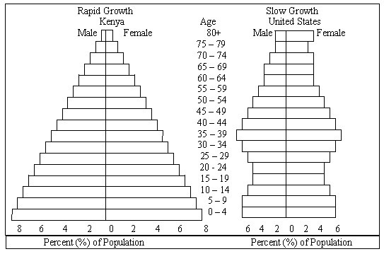 Population Pyramid Worksheet Worksheets For All