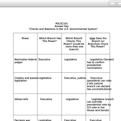 Check And Balance Worksheet
