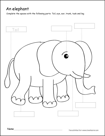 Colour The Parts Of The Elephant