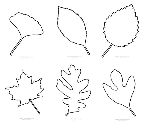Fall Leaf Preschool Printables