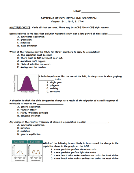 Patterns Of Evolution And Selection Worksheet Darwin's Natural