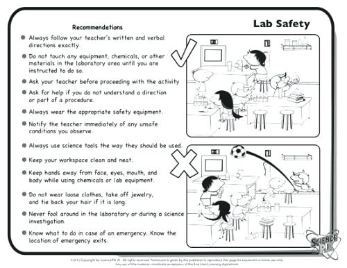 12+lab Safety Symbols Worksheet