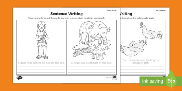 Who's At The Zoo  Trace And Copy Sentences Worksheet   Activity Sheet