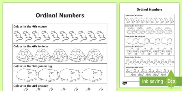 Ordinal Numbers Worksheet   Activity Sheet