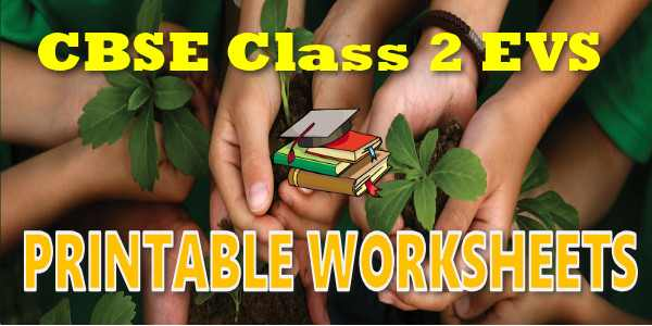 Cbse Worksheets For Cbse Class 02 Evs Animals