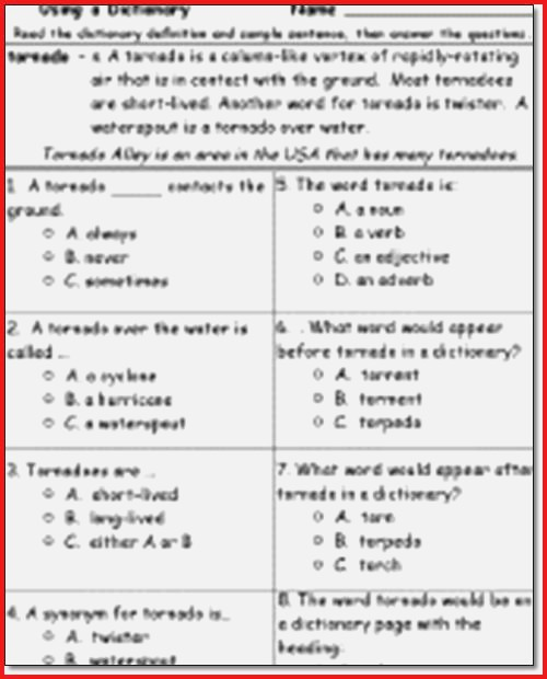 2nd Grade Reading Comprehension Worksheets Multiple Choice 2nd