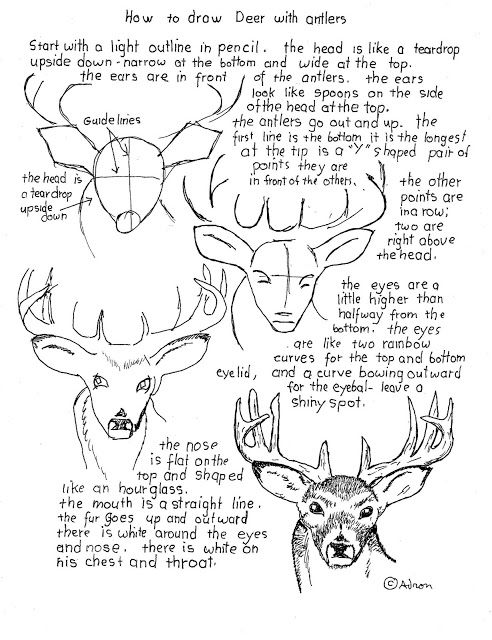 How To Draw Worksheets For Young Artist These Could Be Great For