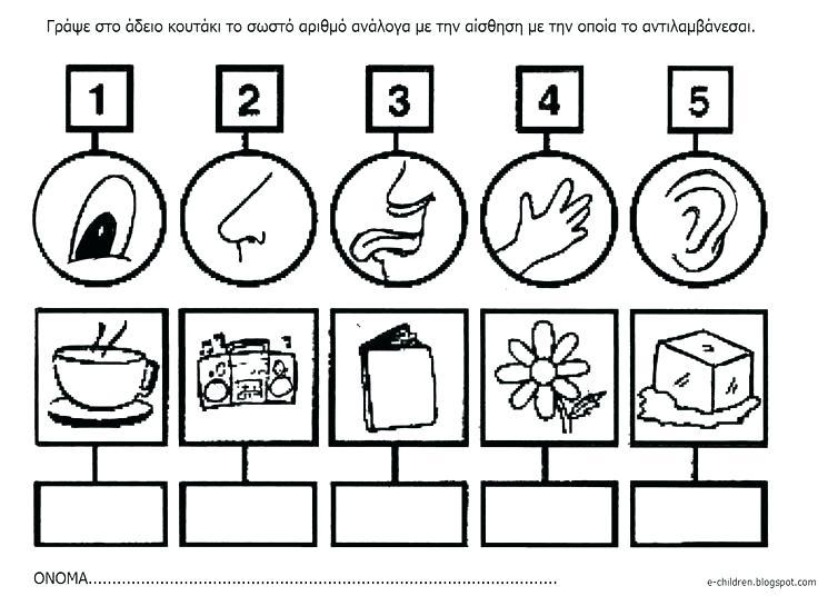 And Worksheets For Kindergarten Free Five Senses Printable Number