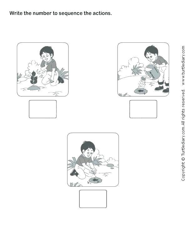 Math Sequence Worksheets Printable Number Worksheets For