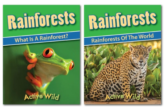 Rainforest Worksheets  Printable Pdf Factsheets Download
