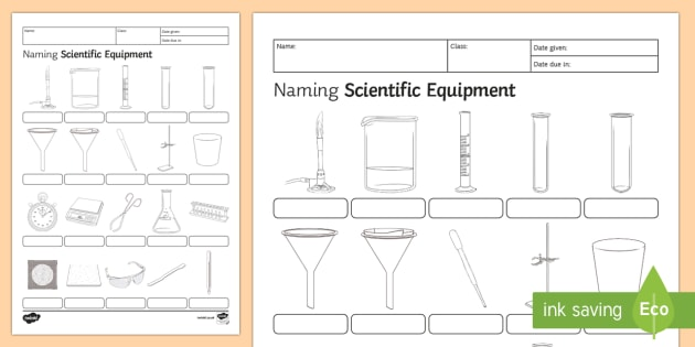 Naming Scientific Equipment Homework Worksheet   Activity Sheet