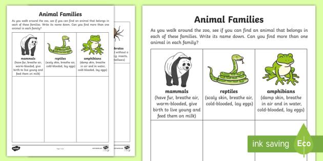 Animal Families Worksheet   Activity Sheet