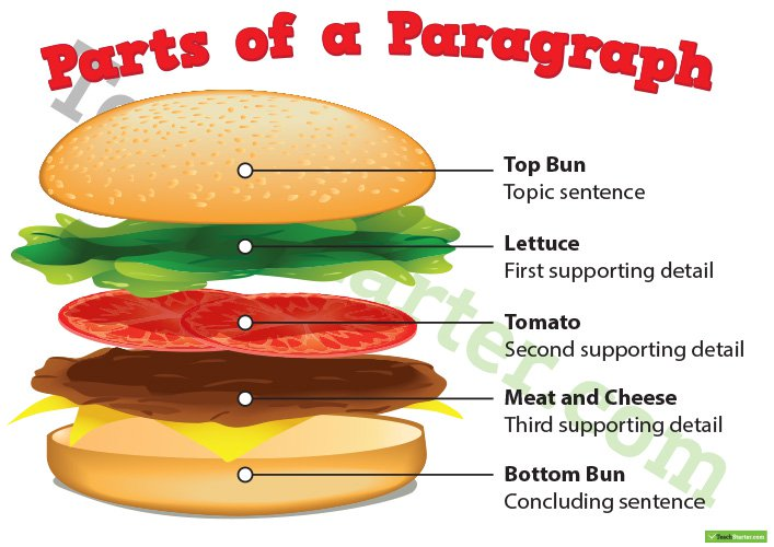 Parts Of A Paragraph Poster Teaching Resource – Teach Starter