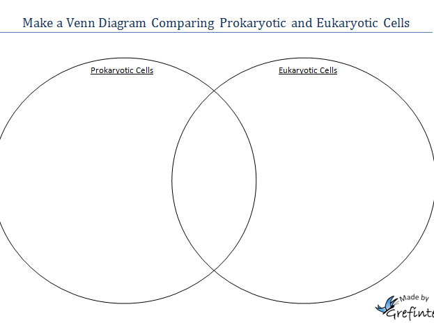 Template For A Venn Diagram Comparing Prokaryotic And Eukaryotic