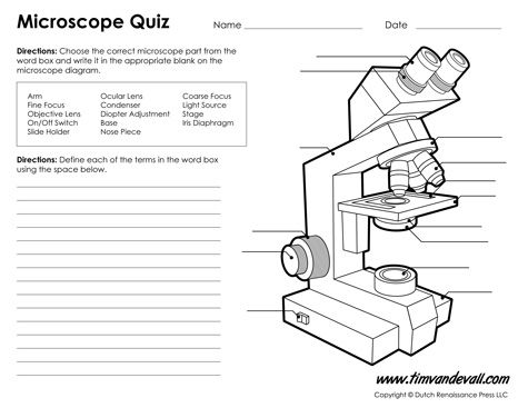 Print A Microscope Diagram, Microscope Worksheet, Or Practice