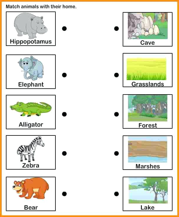 Animals And Their Homes Pictures Worksheets Animal Habitat