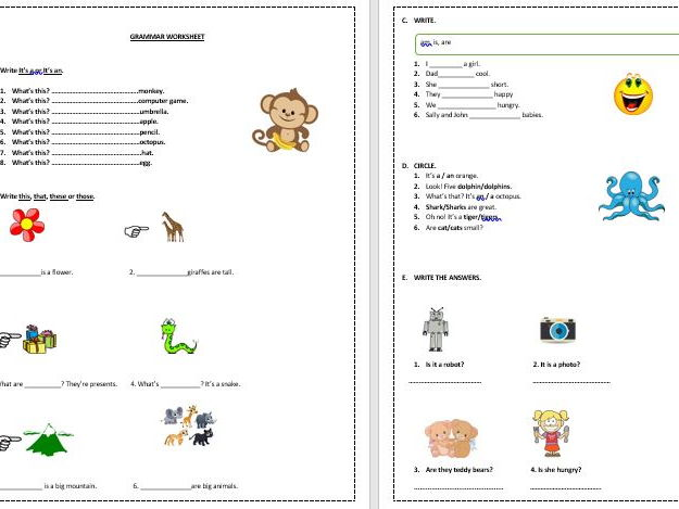 Beginners In English Essential Grammar And Vocabulary Worksheets