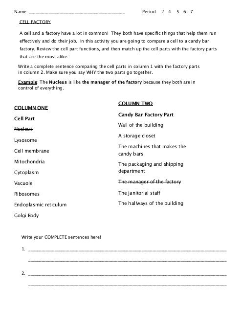 Cell Factory Worksheet