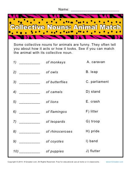 Collective Noun Worksheets