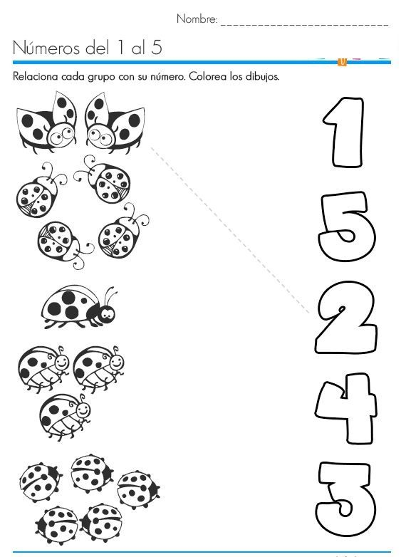 Ladybug Counting Number Worksheets