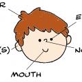 Face Worksheets For Kindergarten