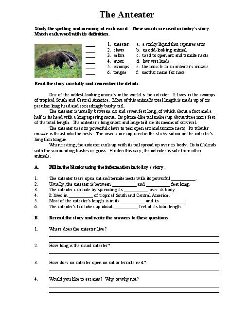 Middle School Reading Comprehension Worksheets