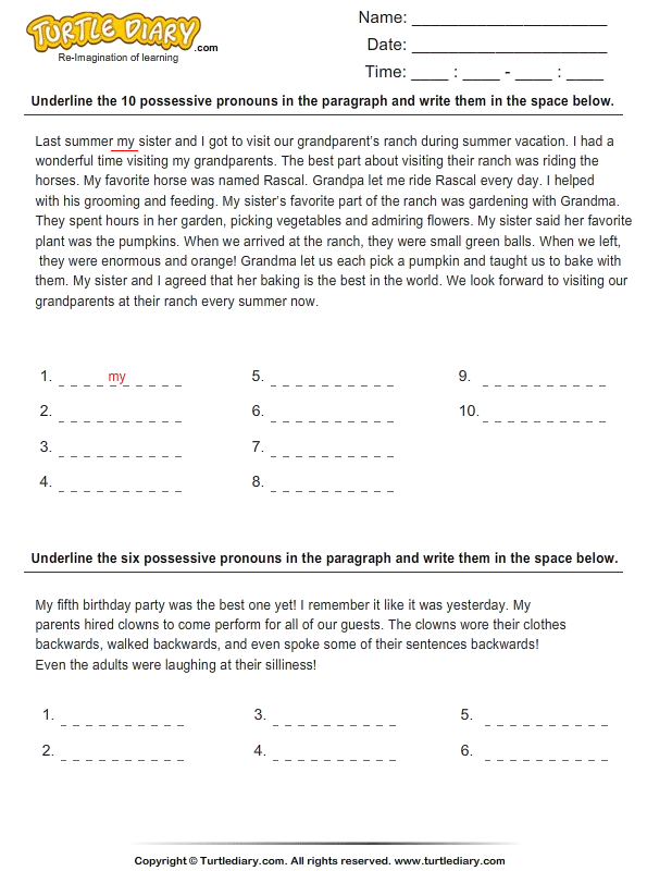 Identify Possessive Pronouns In A Paragraph Worksheet