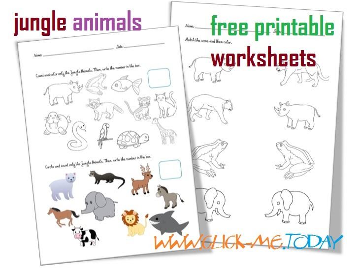 Free Printable Jungle Animals Worksheets