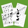 Zoo Worksheets For Preschoolers