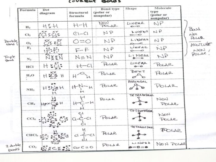 Polyatomic Ions Worksheet With Answers