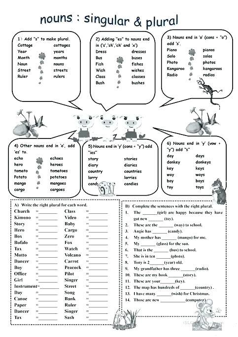 Singular And Plural Nouns Worksheets Noun Sort Vs Related Post