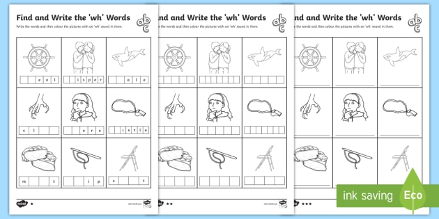 Find And Write The Wh Words Differentiated Worksheets