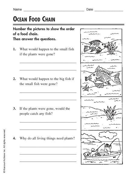 Worksheet  Free Food Chain Worksheets  Caytailoc Free Printables