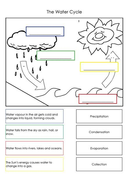 Water Cycle Worksheets For Kids Free