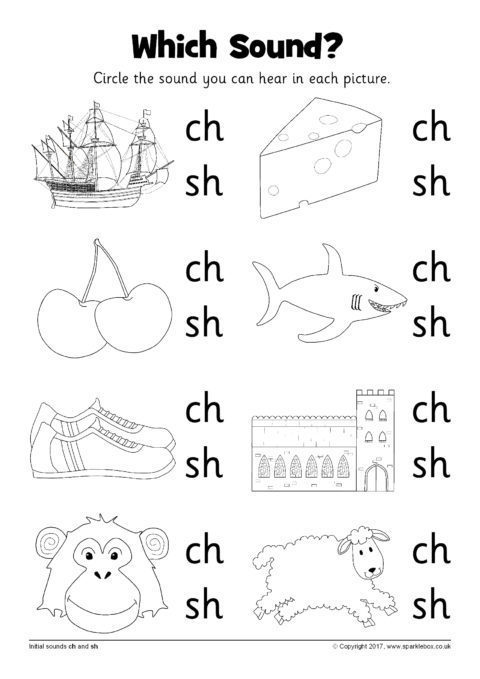 Which Sound  Worksheets – Ch And Sh (sb12216)