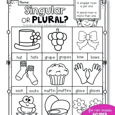 1st Grade Nouns Worksheet Singular And Plural Nouns Worksheets Pdf