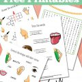 Preschool Human Body Worksheets