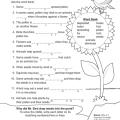 Grade 4 Science Worksheets Plants