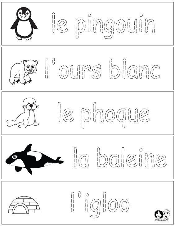 French Winter Animals Worksheets