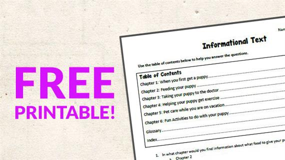 Free Printable  Informational Text Worksheet