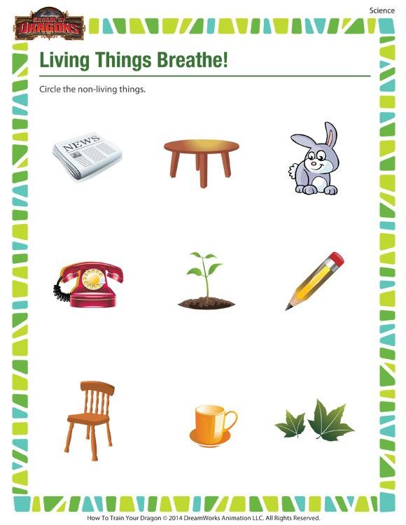 Living Things Breathe – Science Worksheet Kindergarten – Sod