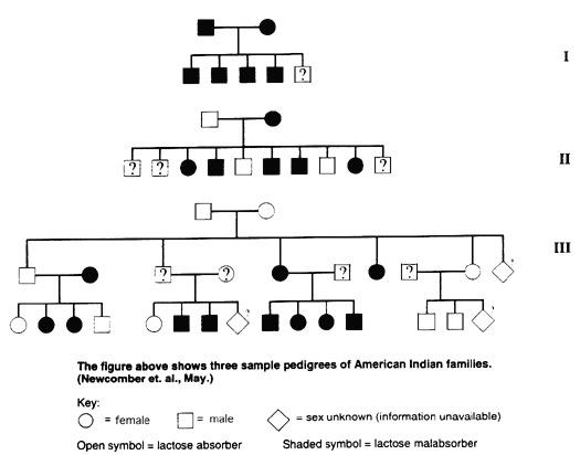 Pedigree Charts Worksheet