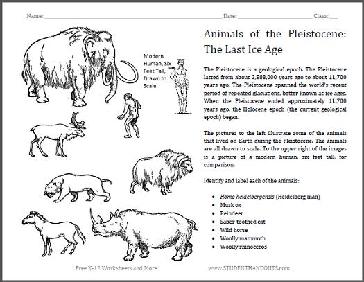Pleistocene Epoch Animals Sheet