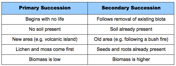 Primary And Secondary Succession Worksheet Archives