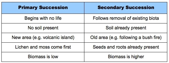 Primary And Secondary Succession Worksheet