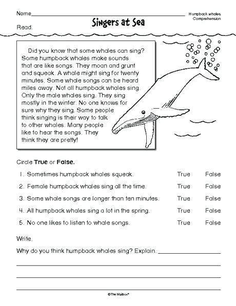 Reading Comprehension Worksheets Printable The Best Image