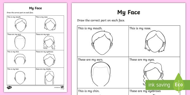 My Facial Features Worksheet   Worksheet