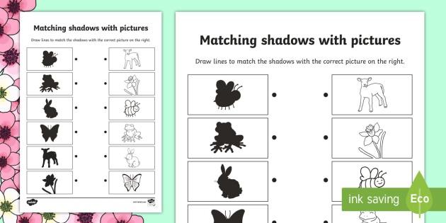 Spring Shadow Matching Worksheet