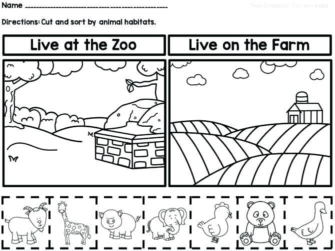 Wild Animals Worksheets For Grade 1 Millenniums Math In Free
